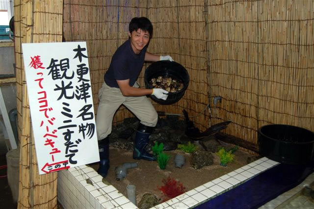 http://www.kouseisuisan.co.jp/report/images/2012/07/sudate-02-1.jpg
